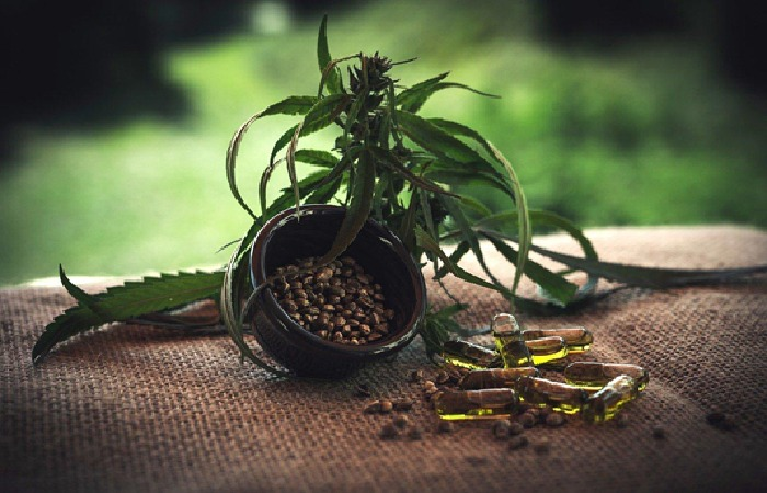 CBD Capsules V/S CBD Oils-Which Is More Popular & Why Is It So?- 2021